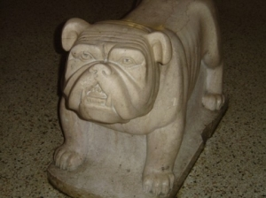 Bruiser our marble bulldog mascot. Now displayed at the new FPK school.